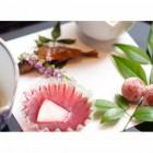 季節折々の味 料理はイメージになります。季節・素材によって内容は変更いたします。