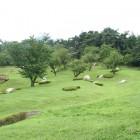 原っぱはらっぱは大人から子どもまでみんなの憩いの場所で、農薬を一切使わず全て手刈りによって管理されている芝地です。