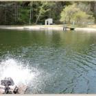 エキスパートエリア(キャッチ&リリース専用)水の豊富な川側。ワンド形状で風下となりやすく吹き溜まりとなる山側。